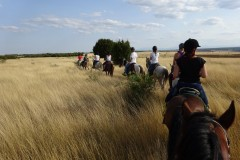 2017_08_Bulgaria_horse_trail-1320